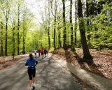 Billeder fra Rudersdal marathon 02-Maj-2010 (85/139)