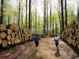 Billeder fra Rudersdal marathon 02-Maj-2010 (87/139)