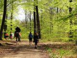Billeder fra Rudersdal marathon 02-Maj-2010 (92/139)