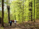 Billeder fra Rudersdal marathon 02-Maj-2010 (114/139)