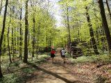 Billeder fra Rudersdal marathon 02-Maj-2010 (117/139)