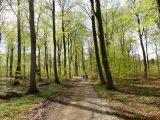 Billeder fra Rudersdal marathon 02-Maj-2010 (122/139)