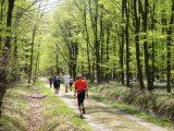 Billeder fra Rudersdal marathon 02-Maj-2010 (123/139)