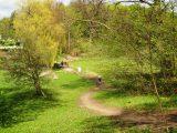 Billeder fra Rudersdal marathon 02-Maj-2010 (135/139)