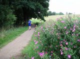 Billeder fra Rudersdal Marathon 09-Aug-2008 (84/140)