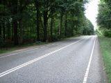 Billeder fra Rudersdal Marathon 09-Aug-2008 (92/140)
