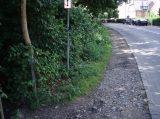 Billeder fra Rudersdal Marathon 09-Aug-2008 (121/140)