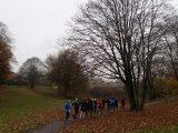 Billeder fra Rudersdal Marathon 11-Nov-2012 (3/134)