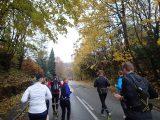Billeder fra Rudersdal Marathon 11-Nov-2012 (4/134)