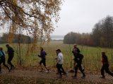 Billeder fra Rudersdal Marathon 11-Nov-2012 (7/134)