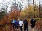 Billeder fra Rudersdal Marathon 11-Nov-2012 (13/134)