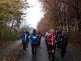 Billeder fra Rudersdal Marathon 11-Nov-2012 (17/134)