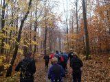 Billeder fra Rudersdal Marathon 11-Nov-2012 (19/134)