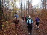 Billeder fra Rudersdal Marathon 11-Nov-2012 (20/134)