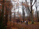 Billeder fra Rudersdal Marathon 11-Nov-2012 (25/134)