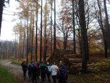 Billeder fra Rudersdal Marathon 11-Nov-2012 (26/134)