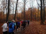 Billeder fra Rudersdal Marathon 11-Nov-2012 (28/134)