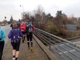 Billeder fra Rudersdal Marathon 11-Nov-2012 (33/134)