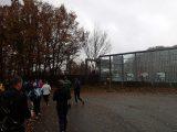 Billeder fra Rudersdal Marathon 11-Nov-2012 (36/134)
