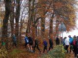 Billeder fra Rudersdal Marathon 11-Nov-2012 (38/134)