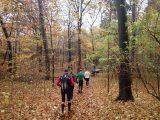 Billeder fra Rudersdal Marathon 11-Nov-2012 (39/134)