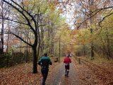 Billeder fra Rudersdal Marathon 11-Nov-2012 (49/134)