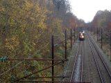 Billeder fra Rudersdal Marathon 11-Nov-2012 (62/134)
