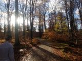 Billeder fra Rudersdal Marathon 11-Nov-2012 (72/134)