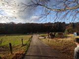 Billeder fra Rudersdal Marathon 11-Nov-2012 (82/134)