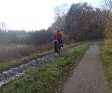 Billeder fra Rudersdal Marathon 11-Nov-2012 (84/134)