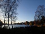 Billeder fra Rudersdal Marathon 11-Nov-2012 (91/134)