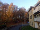 Billeder fra Rudersdal Marathon 11-Nov-2012 (97/134)