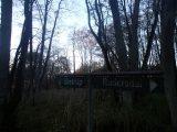 Billeder fra Rudersdal Marathon 11-Nov-2012 (104/134)