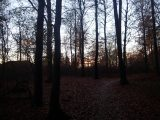Billeder fra Rudersdal Marathon 11-Nov-2012 (109/134)