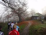 Billeder fra Rudersdal Marathon 13-Nov-2011 (7/183)