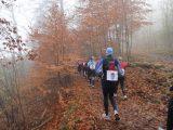 Billeder fra Rudersdal Marathon 13-Nov-2011 (8/183)