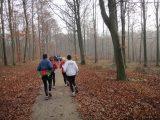Billeder fra Rudersdal Marathon 13-Nov-2011 (24/183)