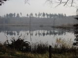 Billeder fra Rudersdal Marathon 13-Nov-2011 (27/183)
