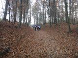 Billeder fra Rudersdal Marathon 13-Nov-2011 (28/183)