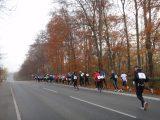 Billeder fra Rudersdal Marathon 13-Nov-2011 (44/183)