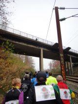 Billeder fra Rudersdal Marathon 13-Nov-2011 (57/183)