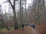 Billeder fra Rudersdal Marathon 13-Nov-2011 (73/183)