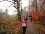 Billeder fra Rudersdal Marathon 13-Nov-2011 (89/183)