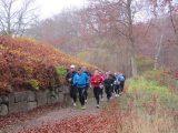 Billeder fra Rudersdal Marathon 13-Nov-2011 (165/183)