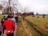 Billeder fra Rudersdal Marathon 14-Nov-2009 (90/156)