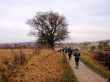 Billeder fra Rudersdal Marathon 14-Nov-2009 (100/156)