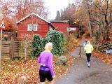 Billeder fra Rudersdal Marathon 14-Nov-2009 (130/156)