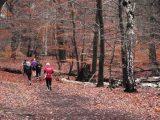 Billeder fra Rudersdal Marathon 14-Nov-2009 (144/156)