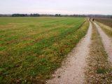 Billeder fra Rudersdal Marathon 14-Nov-2009 (155/156)