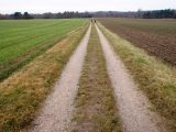 Billeder fra Rudersdal Marathon 14-Nov-2009 (156/156)